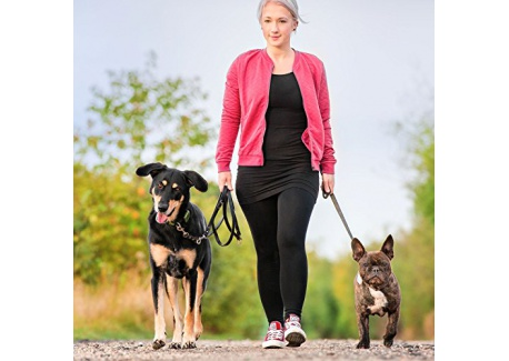 Tracker GPS Tractive pour chiens et chats